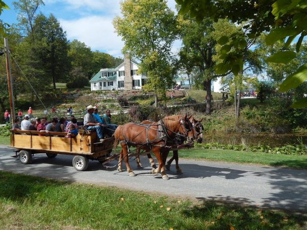 Horse-drawn wagon carrying visitors at Malabar Farm Heritage Days.